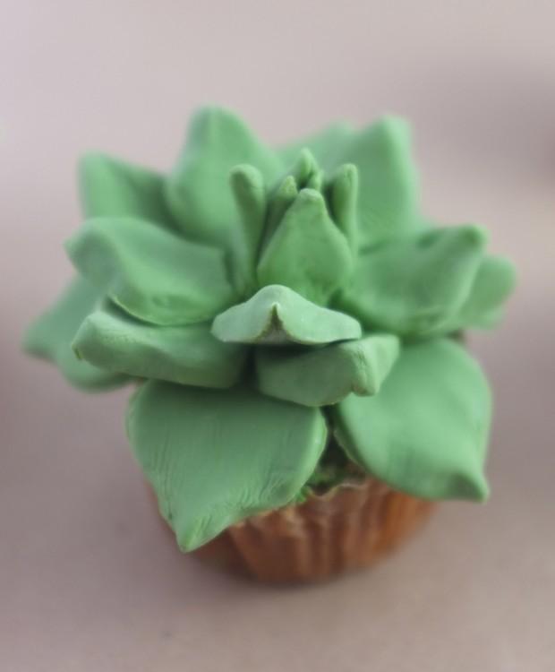 Cupcakes ktoré vyzerajú ako skutočné kaktusy 5