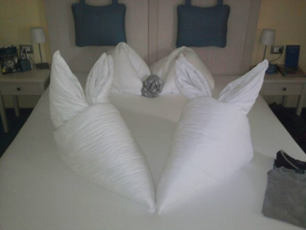 perinove origami 14