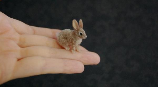 Miniaturne zvieratka od reve 16