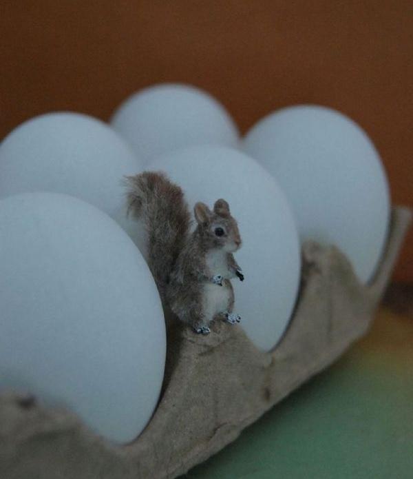 Miniaturne zvieratka od reve 2