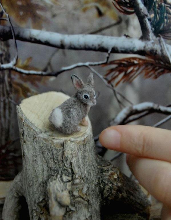 Miniaturne zvieratka od reve 3