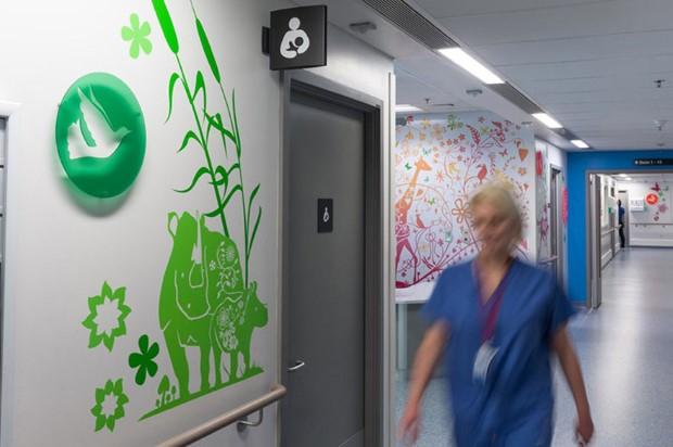 Ako umelci premenili nemocnicu 20
