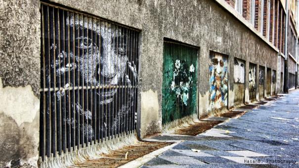 Zebrating street art 10