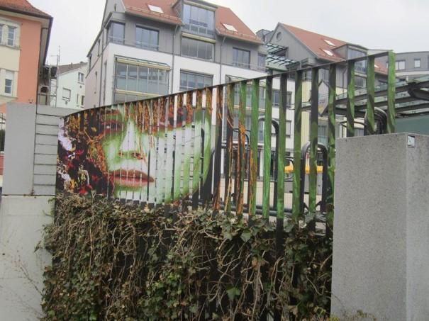 Zebrating street art 11