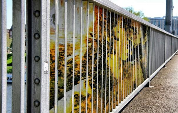 Zebrating Šikovne ukrytý street art, ktorý uvidíte len z určitého uhla pohľadu 8