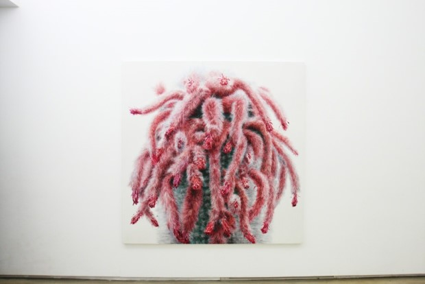 Kwang-Ho Lee hyperrealisticke obrazy kaktusov 10