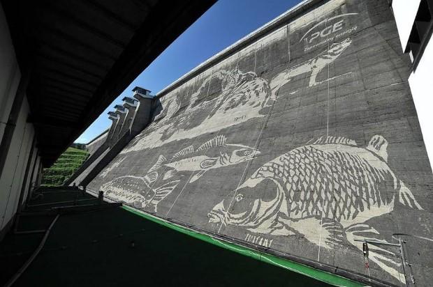 ekologicka malba na priehrade v Polsku 7