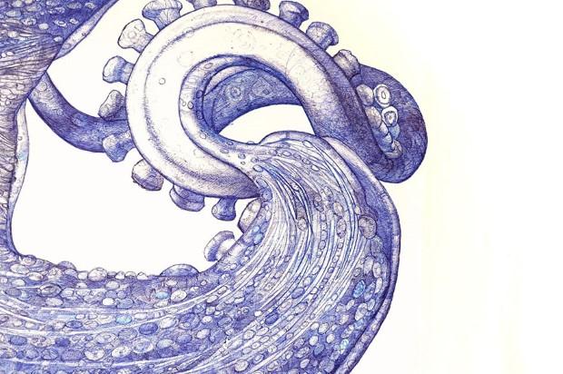 Raymond Cicin chobotnica nakreslena gulockovym perom 3