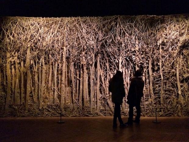 Eva Jospin umenie lesy z kartonu 3
