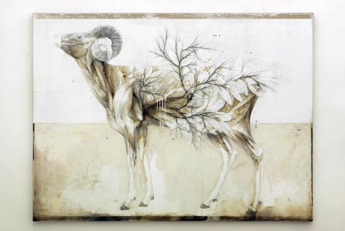 Nunzio Paci grafitove a olejove malby 3