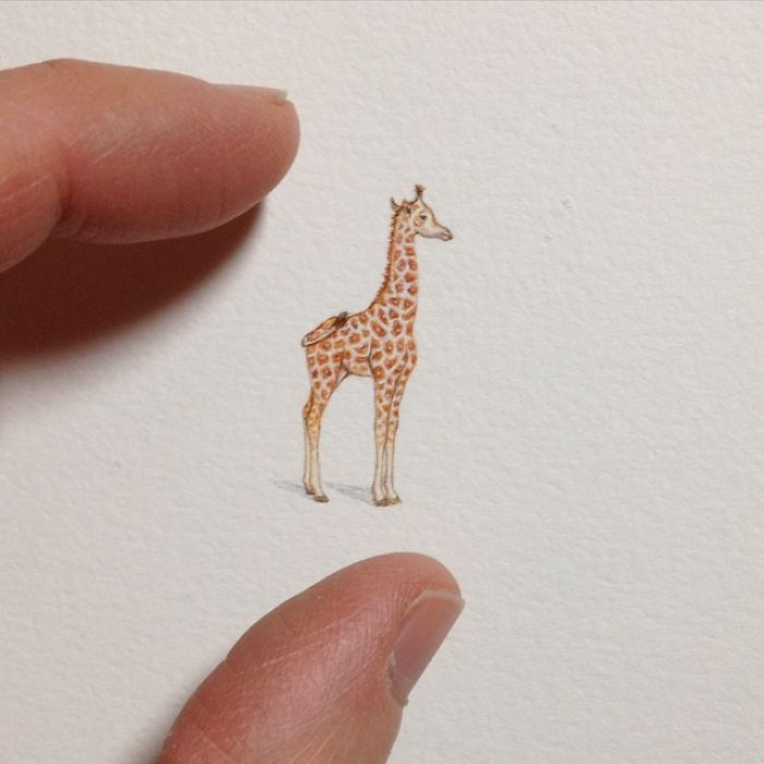 Brooke Rothshank miniaturne malby 12