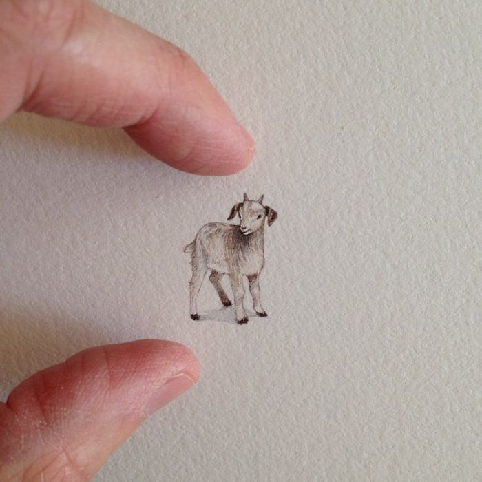 Brooke Rothshank miniaturne malby 7