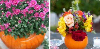 Tekvicové kvetináče a vázy ozdobia izbu, terasu či stôl | Kreatívne nápady