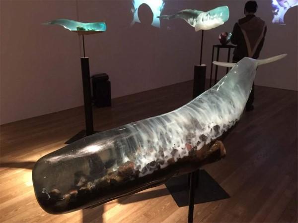 Isana Yamada svety vo vnutrach velryb 6a