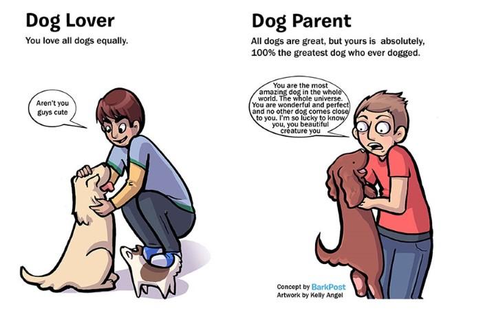 rozdiely medzi milovnikom a majitelom psa 2
