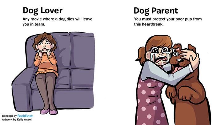 rozdiely medzi milovnikom a majitelom psa 4