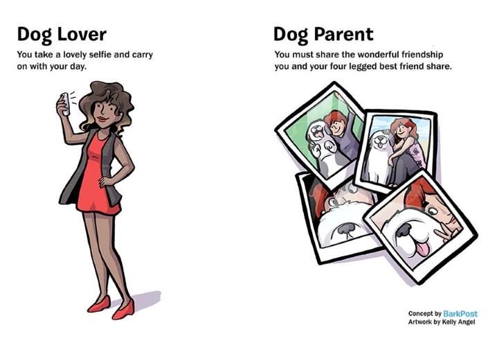 rozdiely medzi milovnikom a majitelom psa 5