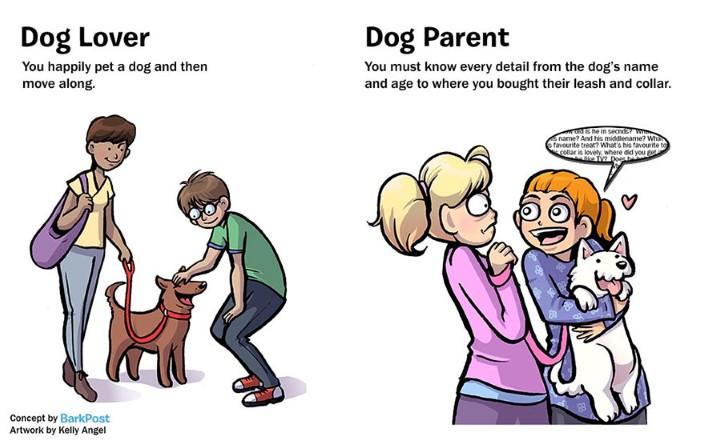 rozdiely medzi milovnikom a majitelom psa 7