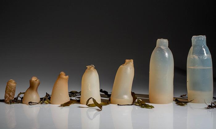 Ari Jonsson biologicky rozlozitelne flase z morskych rias 1