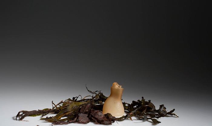 Ari Jonsson biologicky rozlozitelne flase z morskych rias 7