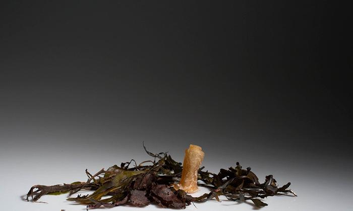Ari Jonsson biologicky rozlozitelne flase z morskych rias 8