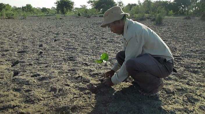 Jadav Payeng majuli vysadzanie stromcekov 2
