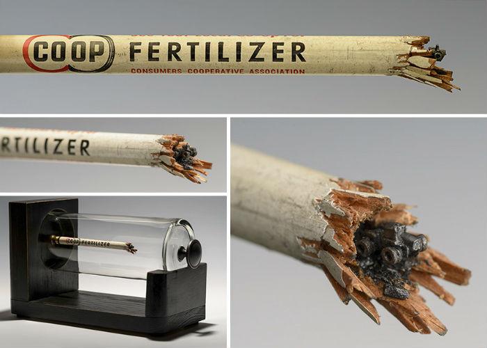vyrezala-celu-rodinu-slonov-z-ceruziek-miniatury-stromy-ceruzky-12