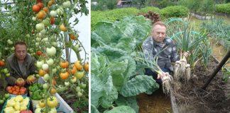 Spoznajte tajomstvá najúrodnejšej záhrady, ktorou sa pýši pestovateľ Igor Ljadov