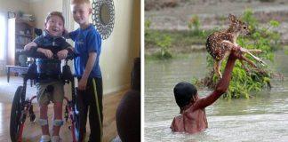 Dobré skutky detí alebo 20 príkladov toho, ako vyzerá správne vychované deti #2