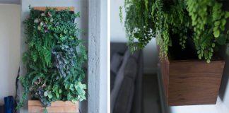 Samozavlažovacie vertikálne záhradky oživia stenu a dotvoria atmosféru