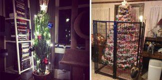 Ako ochrániť vianočný stromček pred domácimi miláčikmi? Nápady ako!
