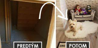 Izba pre psíka pod schodmi. Takto vyzerá šťastný psík s vlastným bývaním