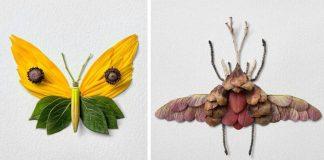 Kvetinové kompozície formované do tvaru motýľov a molí | Raku Inoue