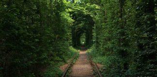 Tunel lásky na Ukrajine vyhľadávajú milenci z celého sveta!