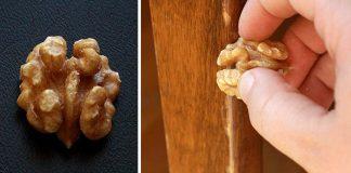 Ako odstrániť škrabance na drevenom nábytku alebo parketách s orechom