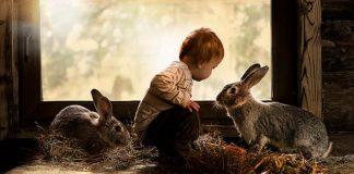 Elena Shumilova zachytáva dobrodružstvá synov na farme