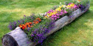 Kvetináč z kmeňa stromu | DIY návod ako postupovať a inšpirácie