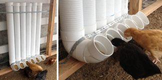 Kŕmidla z PVC rúr nielen pre sliepky | Kreatívny DIY nápady a návody
