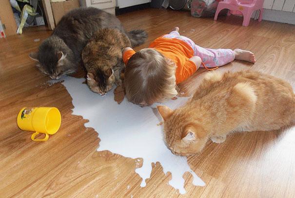 deti zvieratkami 1