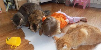 25 detí, ktoré si tak trochu myslia, že sú v skutečnosti zvieratká
