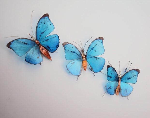 Julie Alice Chappell okridleny hmyz zo suciastok 10