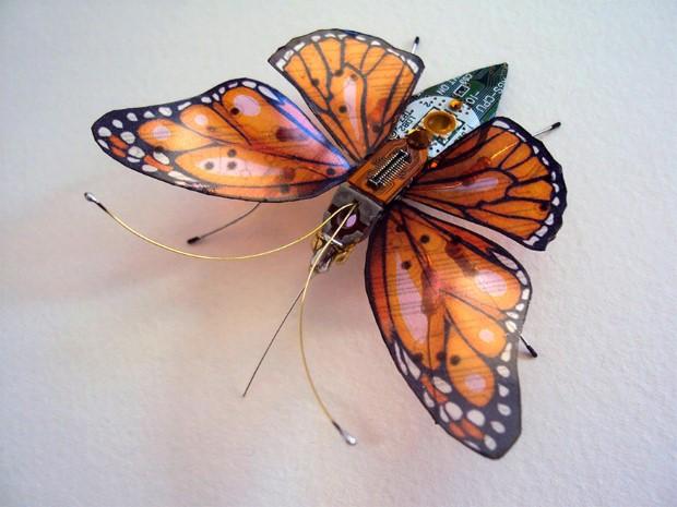 Julie Alice Chappell okridleny hmyz zo suciastok 11