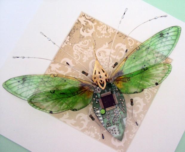 Julie Alice Chappell okridleny hmyz zo suciastok 12