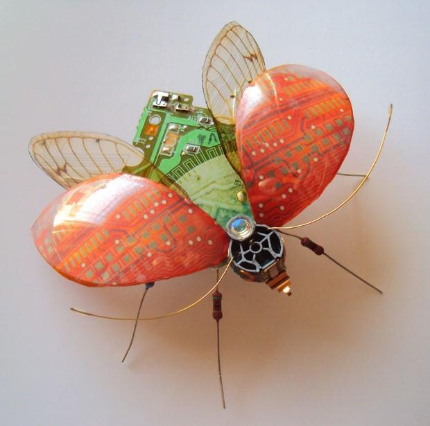 Julie Alice Chappell okridleny hmyz zo suciastok 7