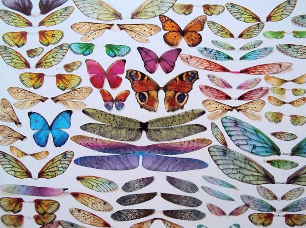 Julie Alice Chappell okridleny hmyz zo suciastok 8