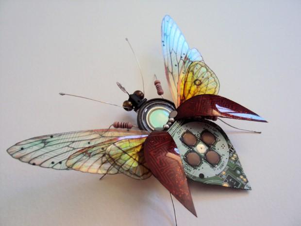 Julie Alice Chappell okridleny hmyz zo suciastok 9