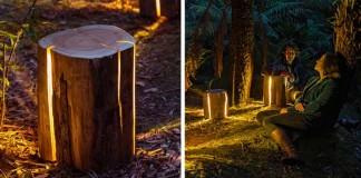 Lampy z pňov stromov | Duncan Meerding aj napriek strate zraku tvorí