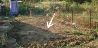 Ako ocino svojpomocne postavil úžasný bazén za domom | Postup