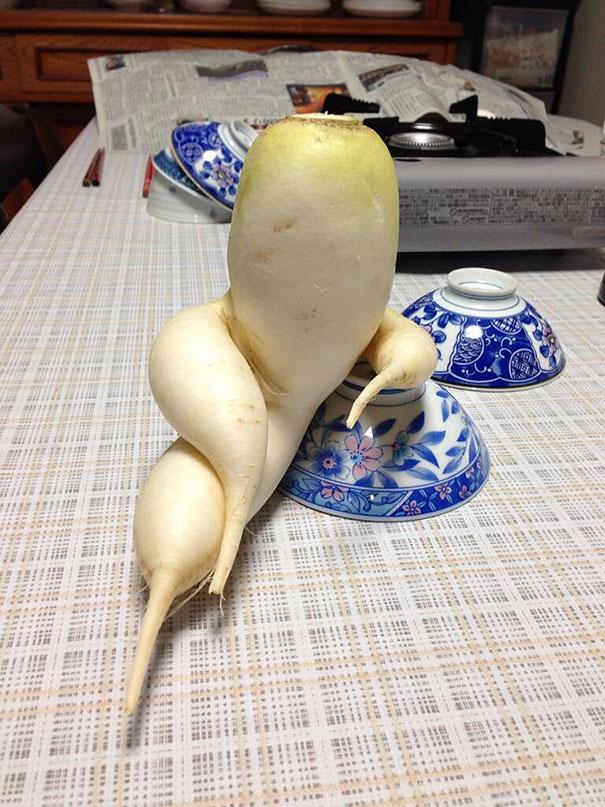 nezvycajne tvary ovocia a zeleniny 10