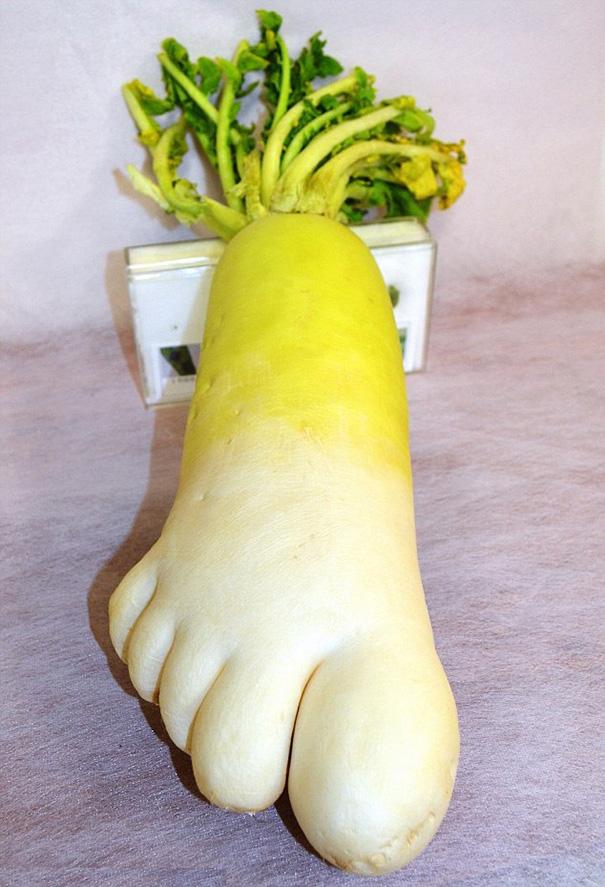 nezvycajne tvary ovocia a zeleniny 7